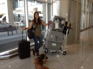 At the Atlanta airport with Janie the dog and Zac and Sacha the cats, about to embark for Warsaw on August 1, 2013.